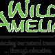 Wild Amelia 2019 Photography Festival