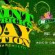 St. Patricks Daycation