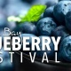 Tampa Bay Blueberry Festival