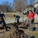 Volunteer Event: Shelby Park