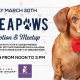 Strike A Paws: Dog Adoption & Meetup