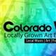 Colorado Vibes: Art, Music, Fashion Showcase