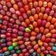 Easter Market/ Muge
