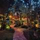 Music at Riverpark Terrace Restaurant
