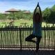 Yoga at the Austin Zoo
