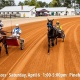 Spring Matinee Races