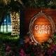 Havana Night at Glass & Vine