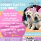4th Annual Doggie Easter Egg Hunt!