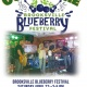 Cover Fire at Brooksville Blueberry Festival