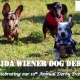 FL Wiener Dog Derby X
