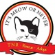 It's Meow or Never For Ferals Cat Adoption Event