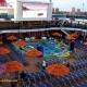 Memorial 2019 Cruise Extravaganza