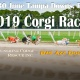 2019 Corgi Races at Tampa Downs