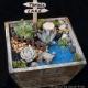 Sidelines - Plant Nite Dock Fairy Garden !