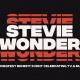 Stevie Wonder: A SeriesFest Benefit Celebrating TV & Music