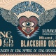 Brown Eyed Women at Blackbird Ordinary 6/29
