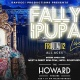 FALLY IPUPA LIVE CONCERT IN WASHINGTON DC (FULL BAND SHOW)