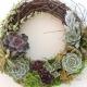 Community Class: Succulent Wreath - October 8th