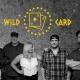Wildcard Rockin The Moose