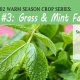 Grass & Mint Families (Warm Season Crop Series)