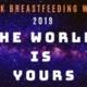 Black Breastfeeding Week 2019 Photo Shoot
