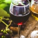 Wines of Maryland and the World