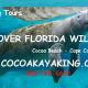 Bioluminescent Comb Jelly Tour