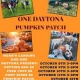 ONE DAYTONA PUMPKIN PATCH