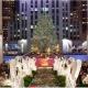 Bushwich ll Family Presents: Christmas Shoot (Reindeer Sweater)