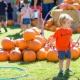 PLNU 16th Annual Fall Festival