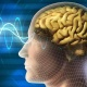 EMDR Therapy, Mirror Neurons, and Neural Synchrony - Special Edition on Tra...