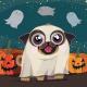 23rd Annual Pug-O-Ween