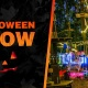 Halloween Glow In the Park