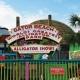 Copy of Gator Experience VIP 2019 Fall Season