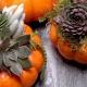Succa For Fall - Tiny Pumpkins + Succulents Class
