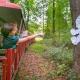 Halloween Eye Spy Train: Wheaton Train and Carousel
