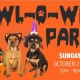 Yappy Hour Howl-O-Ween