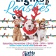 Lights and Leashes