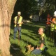 ISA TRAQ Renewal Course (Tree Risk Assessment Qualification Renewal Course-...