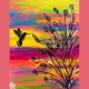 Mimosa Morning: Colorful Hummingbird