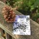 Longleaf Pine Day