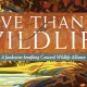 Give Thanks for Wildlife
