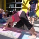 Yoga with Rescued Pigs @ Diebolt Brewing Co