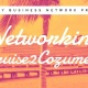 Networking Cruise2Cozumel | Tampa Bay Business Network!