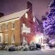 Historic Ogle Hall Tree Lighting