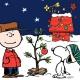 A Charlie Brown Xmas Night Three