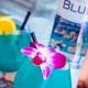 Blue Martini Saturdays at Blue Martini Free Guestlist - 12/14/2019