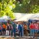 Bayou City Art Festival Memorial Park 2020