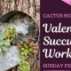 Valentine Succulent Workshop at Southern Brewing