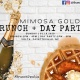 Mimosa Gold Brunch + Day Party